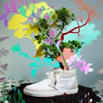 OAT: Shoes that Bloom